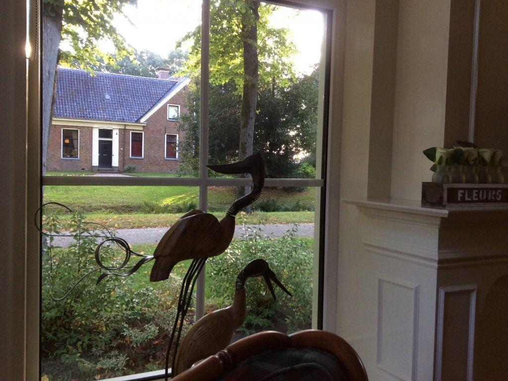 Uitzicht vanuit de woonkamer